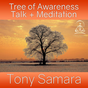 Tree of Awareness Talk + Meditation (MP3 Audio Download) - Tony Samara Meditation