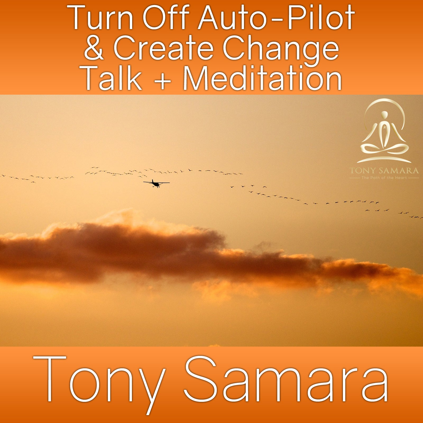 Turn Off Auto-Pilot & Create Change Talk + Meditation (MP3 Audio Download) - Tony Samara Meditation