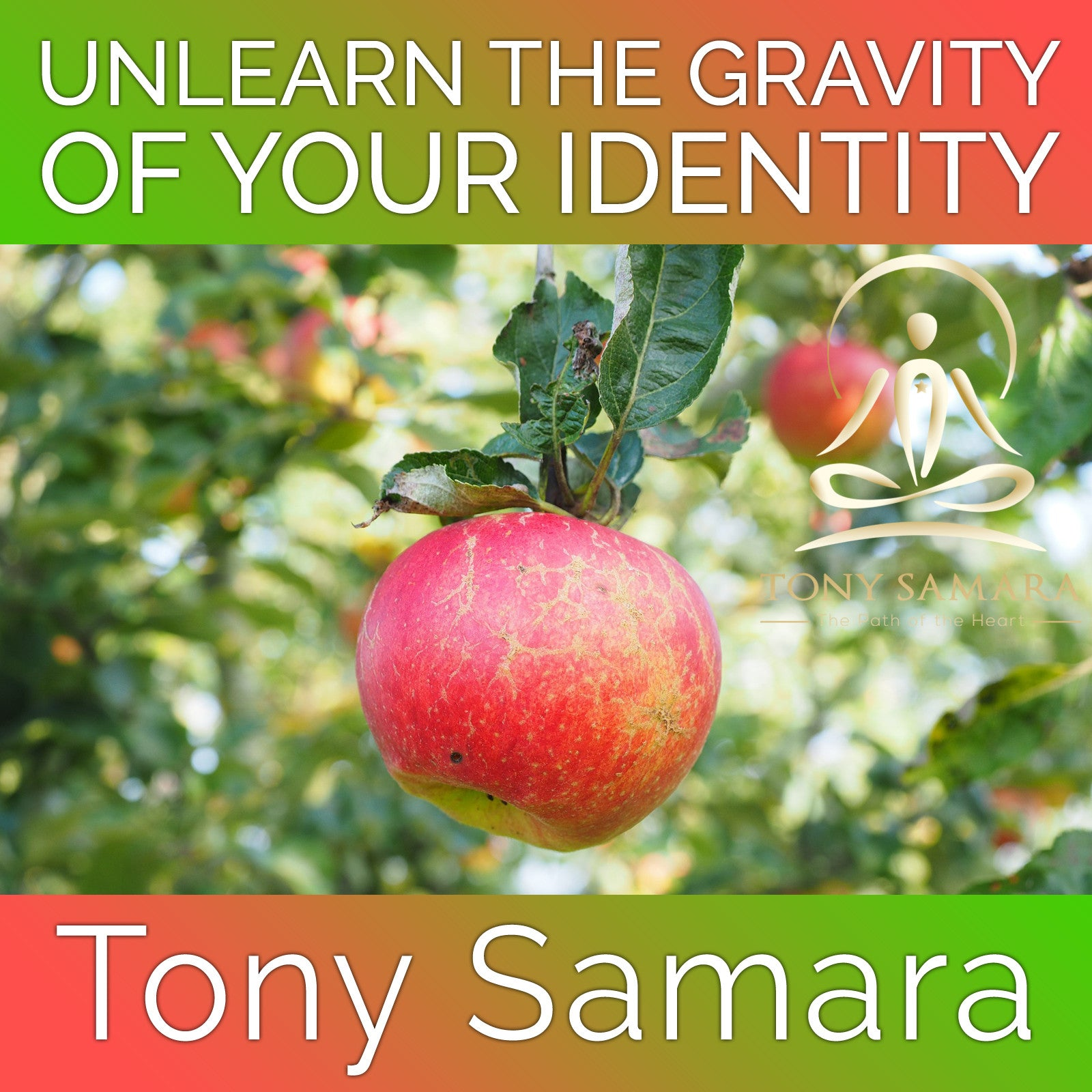 Unlearn the Gravity of Your Identity (MP3 Audio Download) - Tony Samara Meditation