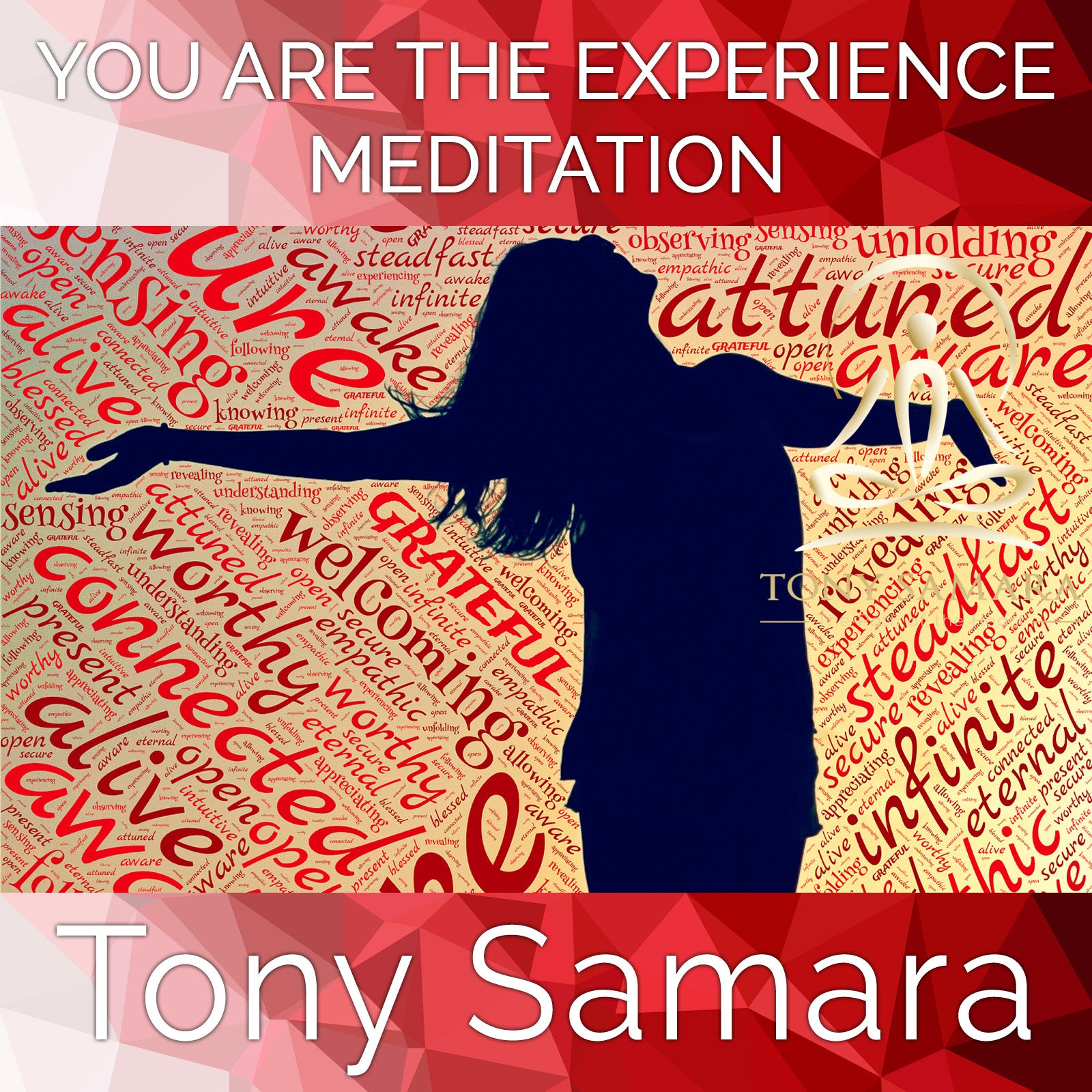 You Are the Experience Meditation (MP3 Audio Download) - Tony Samara Meditation