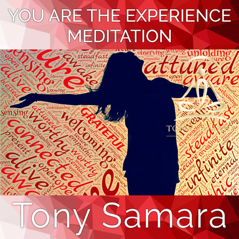 You Are the Experience Meditation (MP3 Audio Download)