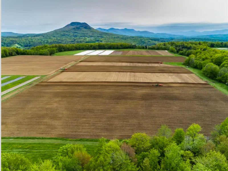 Sunsoil® CBD doubles Vermont acreage in 2019 to meet demand and fuel continued growth