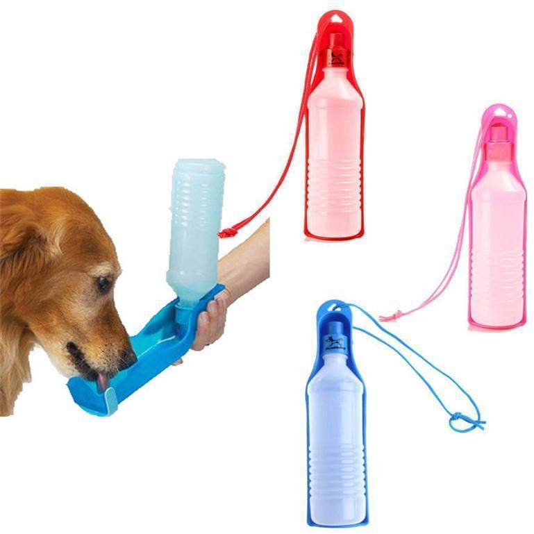 Foldable Dog Water Drinking Bowl Offer - Alpha Bargain