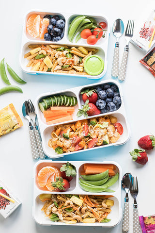 Back to School Lunch Ideas – Earth To Kids