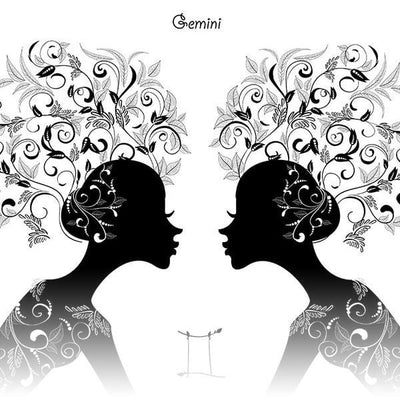 Gemini Collection- Astrologia Store