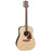 Takamine GD93-NAT Acoustic Guitar - Quest Music Store