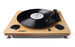ION Archive LP - Digital Conversion Turntable w/ Built-in Stereo Speakers - Quest Music Store