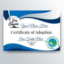 Adopt a Sea Turtle Nest