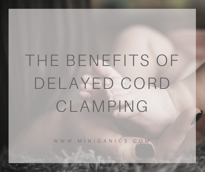Pregnancy: Why I Decided to do Delayed Cord Clamping
