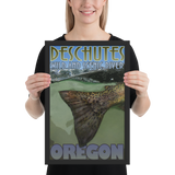 TroutBus - Deschutes Redside Poster II - Framed photo paper poster