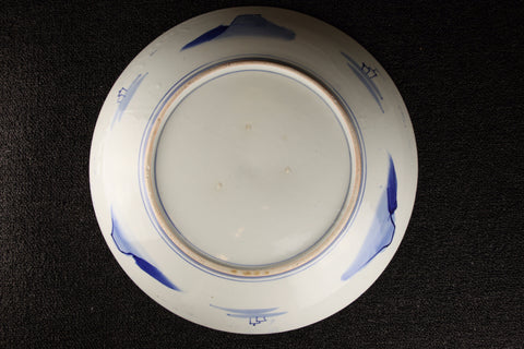 IMARI BLUE AND WHITE PORCELAIN LANDSCAPE PATTERN PLATE