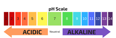 PART 1 - The Surprising Truth about Alkalinity