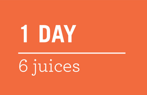 Babo 1-Day Juice Cleanse