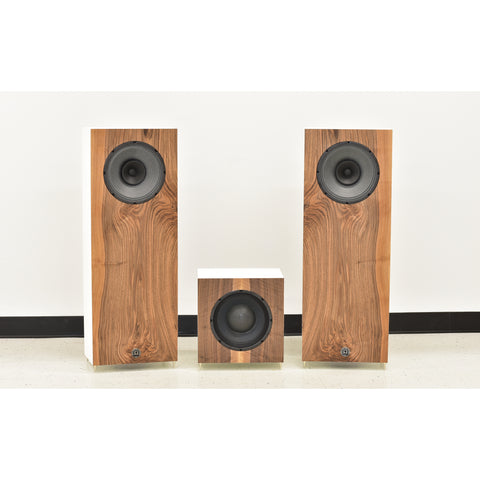 Super Alnico 10 XRS Towers w/ Speed 10 Subwoofer