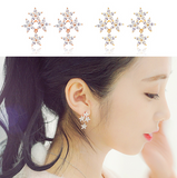SPRING WALTZ Earring - Wingbling Global