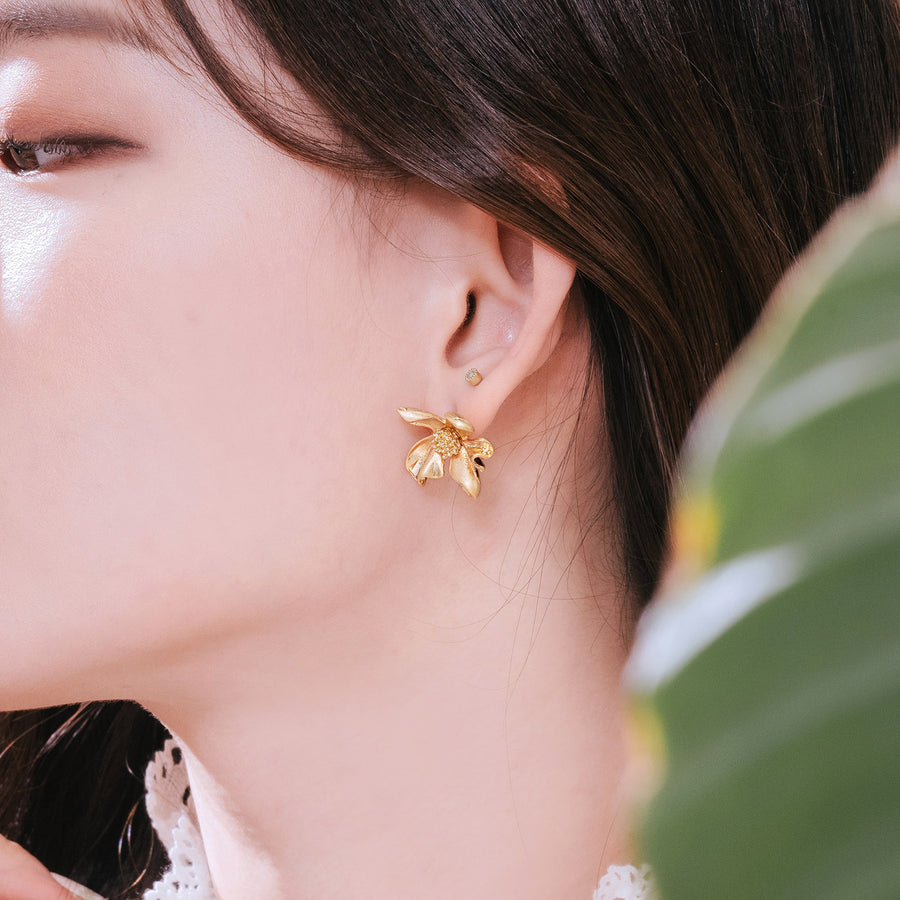 AMANT Earring