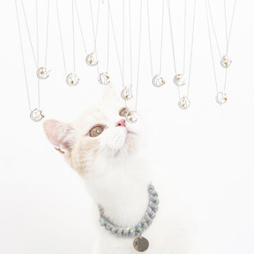 Constellation Cat Necklace