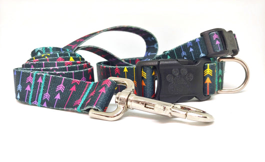 Colorful Arrow Dog Collar (Matching Leash Available)