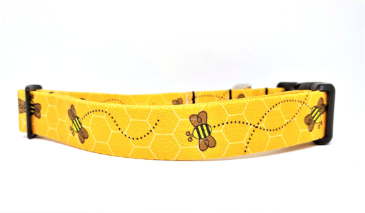 Bumble Bee Dog Collar (Matching Leash Available)