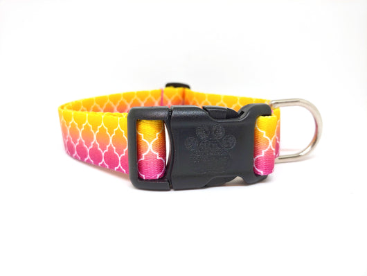 Pink and Yellow Ombre Webbing Dog Collar (Matching Leash Available)