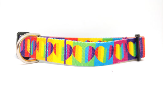 Rainbow Heart Dog Collar (Matching Leash Available)
