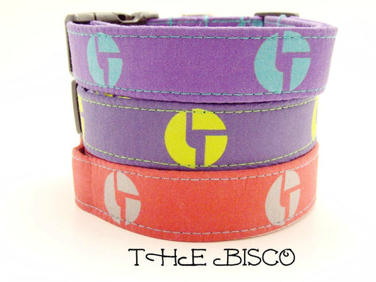 The Bisco - Disco Biscuits Dog Collar (Matching Leash Available)