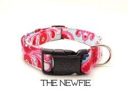 The Newfie - Blue and Pink Paisley Dog Collar (Matching Leash Available)