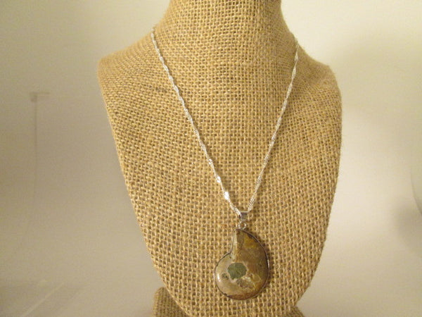 Stunning Necklace 18k White Gold Plated Natural Ammonite Fossil Pendant. - SpuzzosDeals
