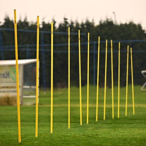Mitre Agility Pole Set (12)