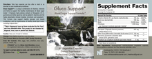 GlucoSupport