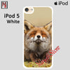 Cute Red Fox Puppy Baby For Ipod Touch 5 Case