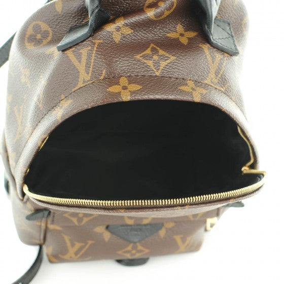 Louis Vuitton Monogram Palm Springs Mini Backpack