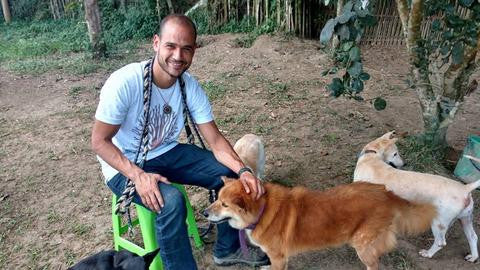 Volunteering at Care for dogs chiang mai