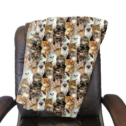 Kitties Rule Blanket - Double Sided