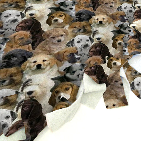 Puppies Rule Blanket Tie Kit