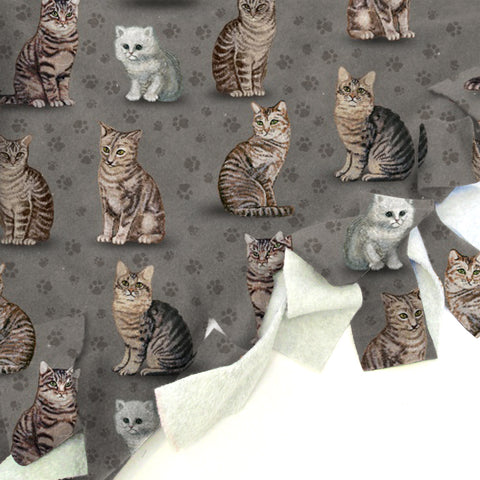 Purrfect Kitties Blanket Tie Kit