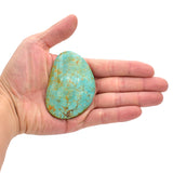 American-Mined Natural Turquoise Cabochon 50mmx73mm Free-Form Shape