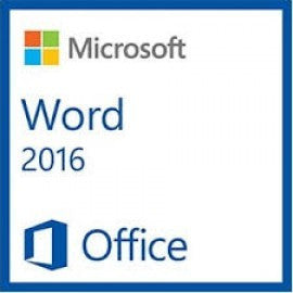 WORD 2016 SNGL OLP 1 LICENSE NO LEVEL