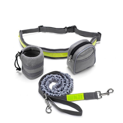Hands Free Dog Leash with Reflective Bags