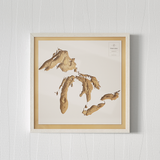 3D Wooden Map of The Great Lakes