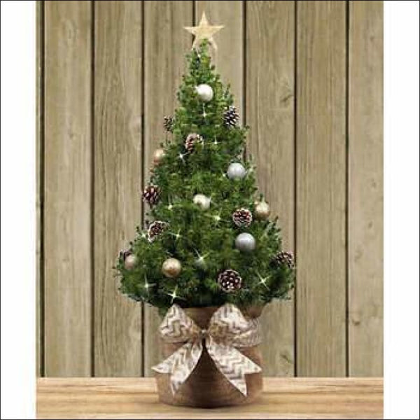 "36"" North Star Medium TableTop Tree 🎄 - AmazinTrends.com"