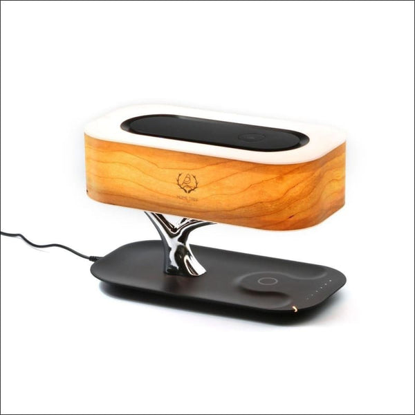Bluetooth speaker or wifi speaker / wireless charging (QI) / LED light / automatic sleep, Tree light speaker, - AmazinTrends.com