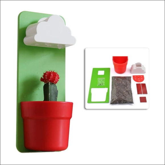 Creative Rainy Clouds Wall-Mounted Flower Pot 💐 - AmazinTrends.com