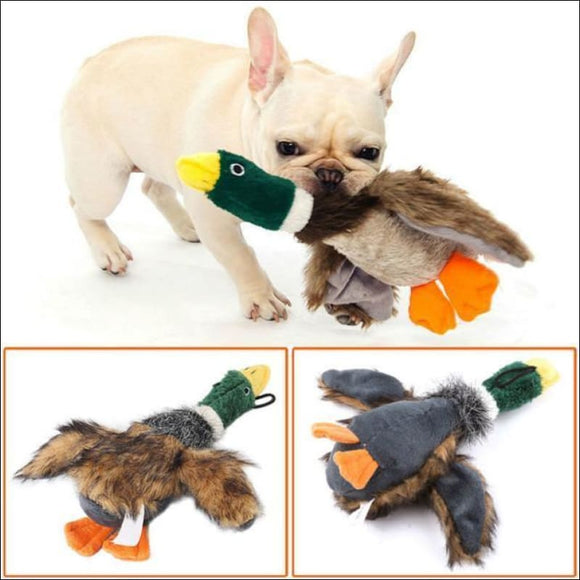 Squeaky Funny Puppy Pet Toy - AmazinTrends.com