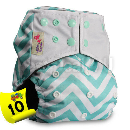 with 1 Bamboo Insert Pattern 2 Littles /& Bloomz Reusable Pocket Real Cloth Nappy Washable Diaper Bamboo Charcoal