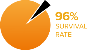 Survival Rate Of Testicular Cancer