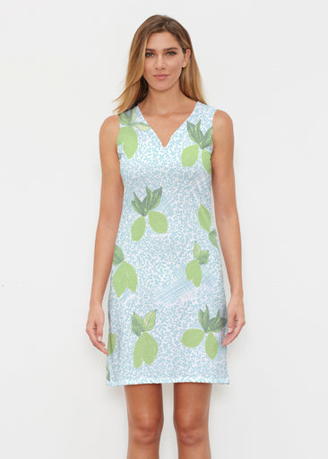 Limes Aqua (10179) ~ Classic Sleeveless Dress