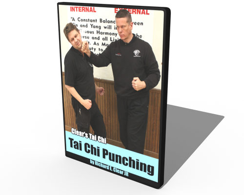 Tai Chi Punching