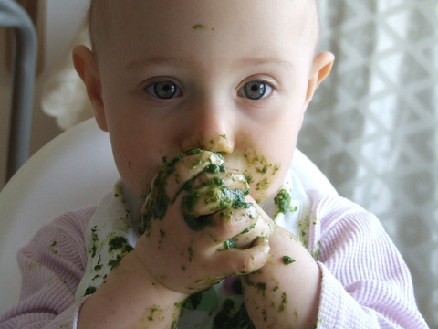 Baby Led Weaning Foods For 9 Month Old