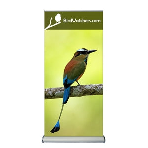 "Vinyl Graphics with Retractable Banner Stand 2-sided 33.5"" X 79"""